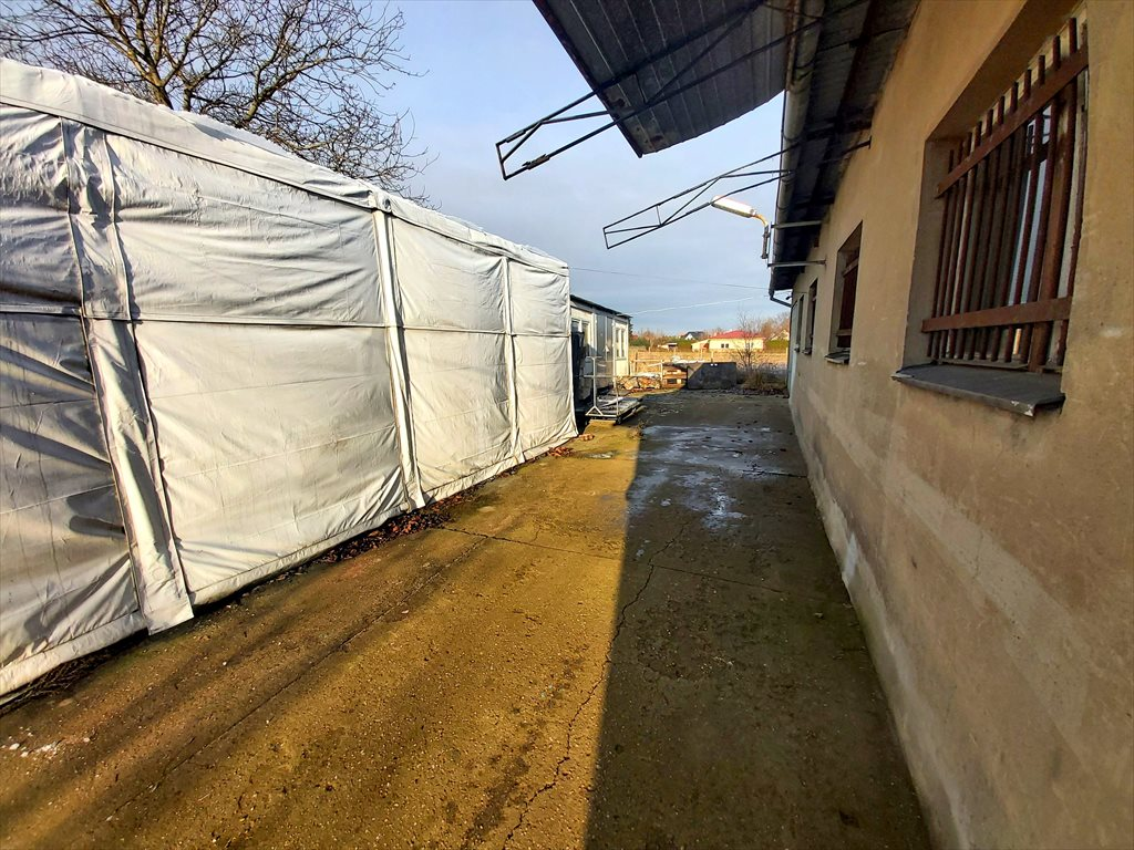 Lokal użytkowy na wynajem Strzyżewice, Balonowa 8  180m2 Foto 3