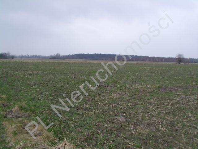 Działka rolna na sprzedaż Mszczonów  13500m2 Foto 3