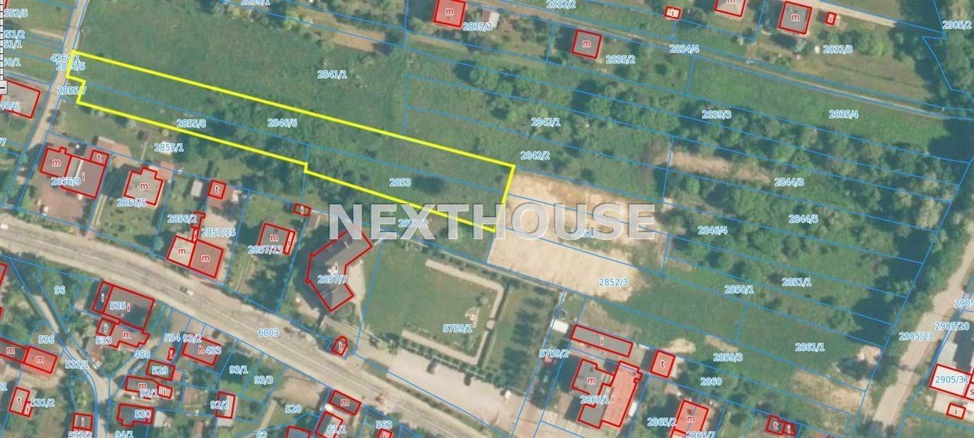 Działka rolna na sprzedaż Chrzanów  3599m2 Foto 2