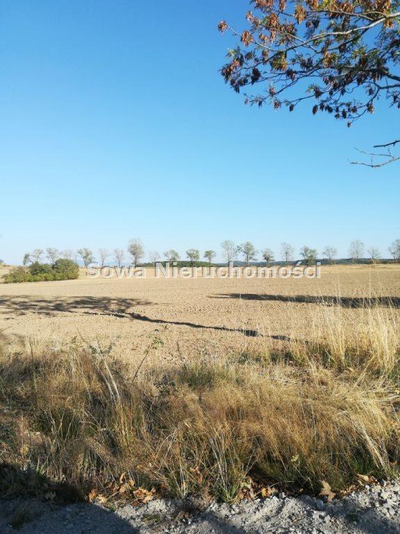 Działka budowlana na sprzedaż Świebodzice, ok. 5 km od Świebodzic  1132m2 Foto 6