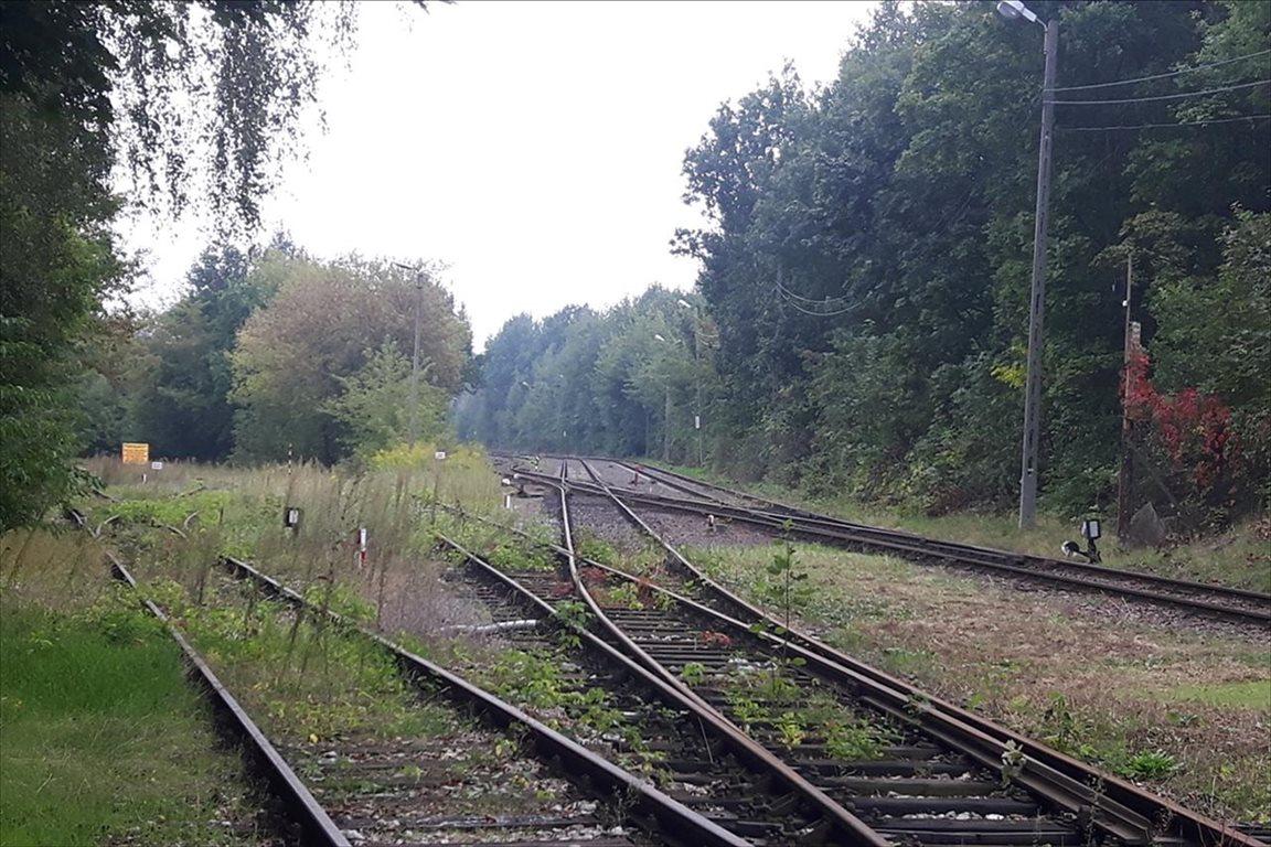 Lokal użytkowy na sprzedaż Łódź, Bałuty  9897m2 Foto 4