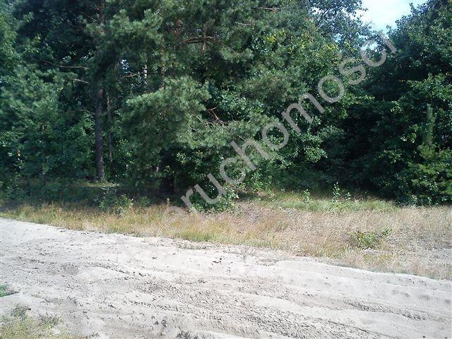 Działka rolna na sprzedaż Stanisławów  18000m2 Foto 7