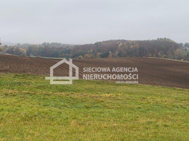 Działka budowlana na sprzedaż Kobysewo  3025m2 Foto 2
