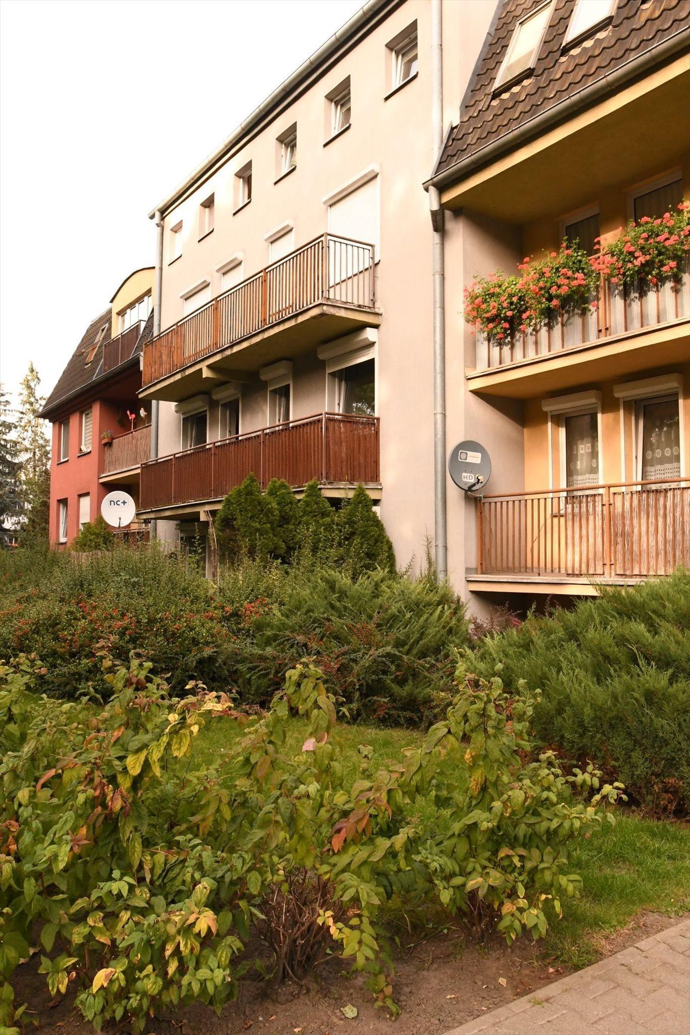 Mieszkanie trzypokojowe na sprzedaż Poznań, Grunwald, Grunwaldzka 173  65m2 Foto 14