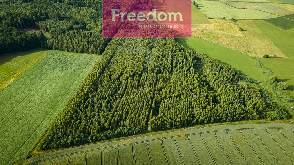 Działka leśna na sprzedaż Parys  93000m2 Foto 3