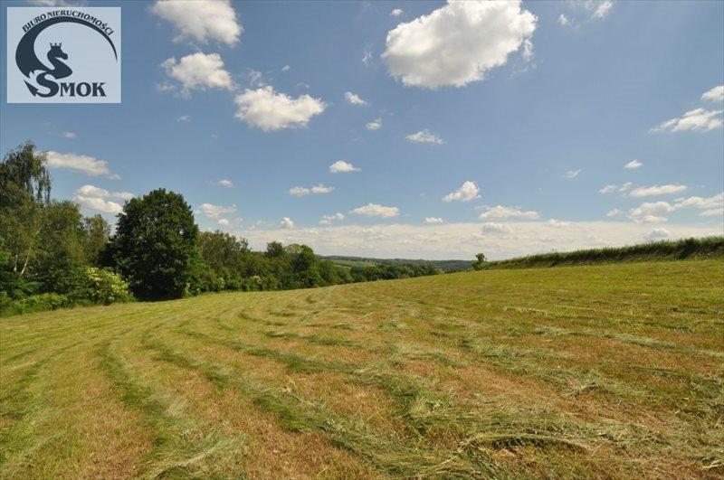 Działka rolna na sprzedaż Wilczkowice  15000m2 Foto 5