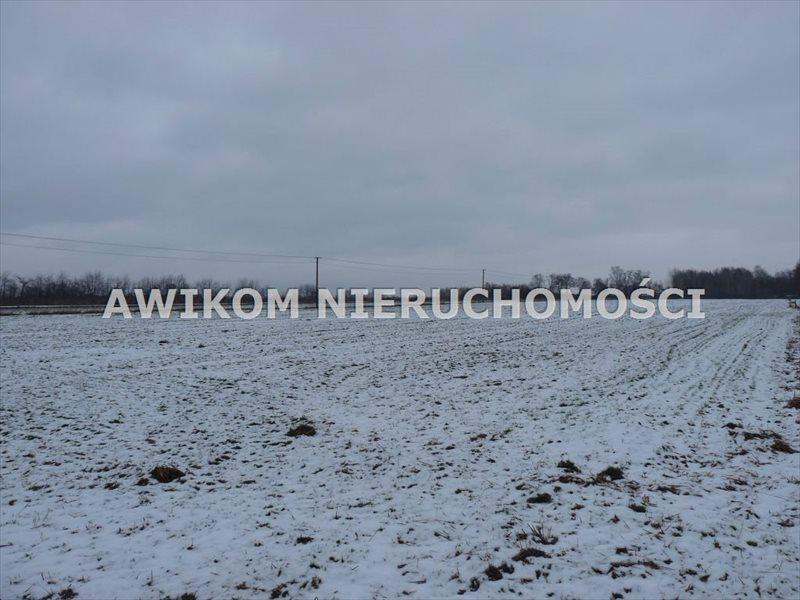 Działka budowlana na sprzedaż Skierniewice, Strobów  1170m2 Foto 1
