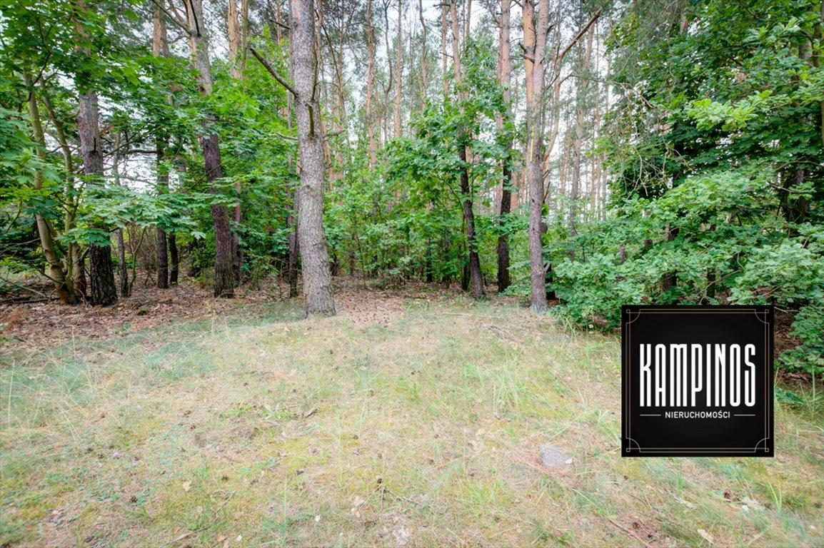 Działka budowlana na sprzedaż Truskaw, Izabelin, oferta 2792  3689m2 Foto 3