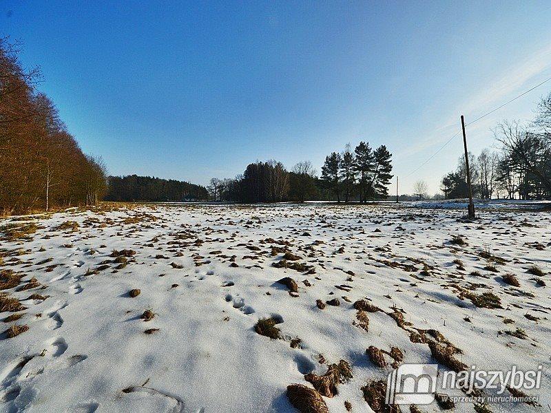 Działka inwestycyjna na sprzedaż Tanowo, wieś  3166m2 Foto 5