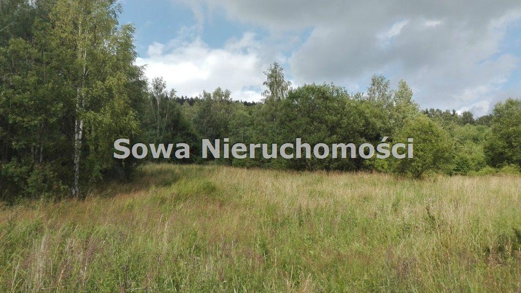 Działka inna na sprzedaż Mieroszów, okolice Mieroszowa  14209m2 Foto 2