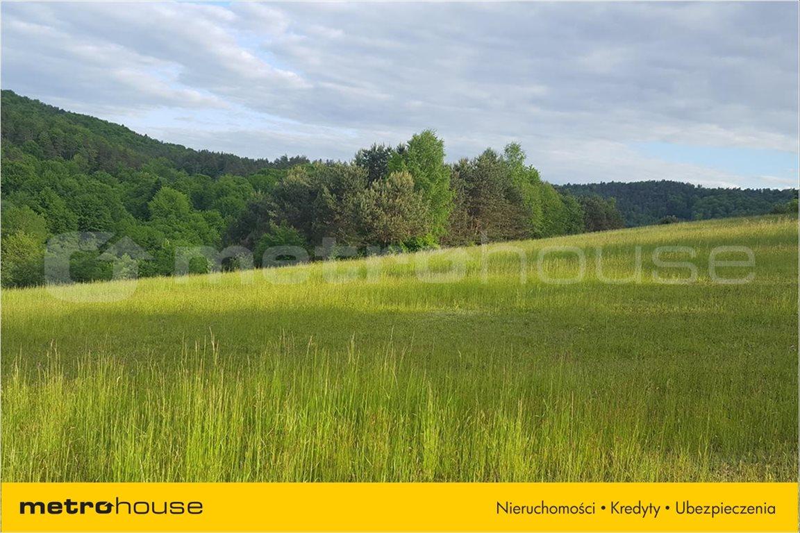 Działka rolna na sprzedaż Średnia Wieś, Lesko  10300m2 Foto 9