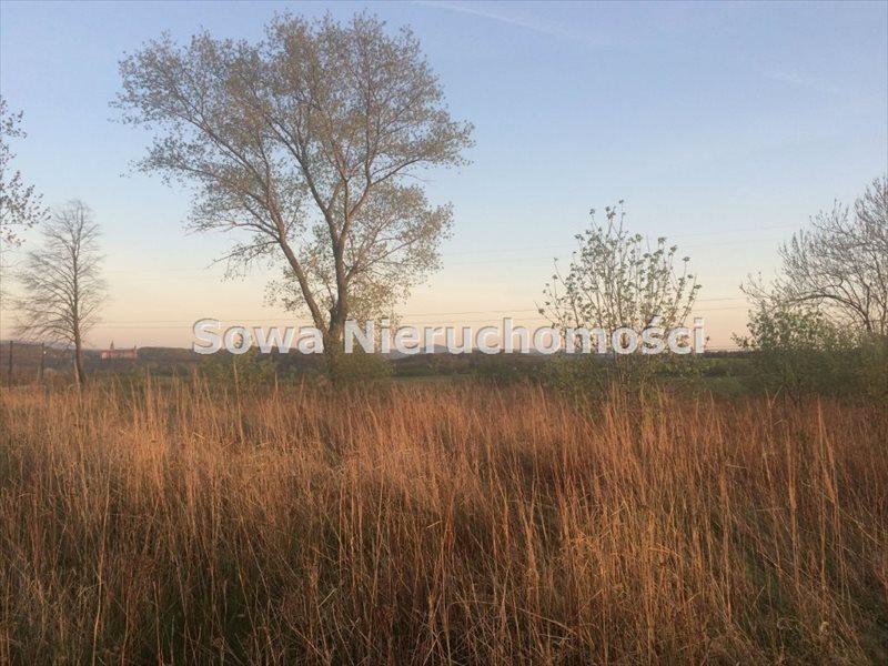 Działka budowlana na sprzedaż Świebodzice, ok. 5 km od Świebodzic  984m2 Foto 2