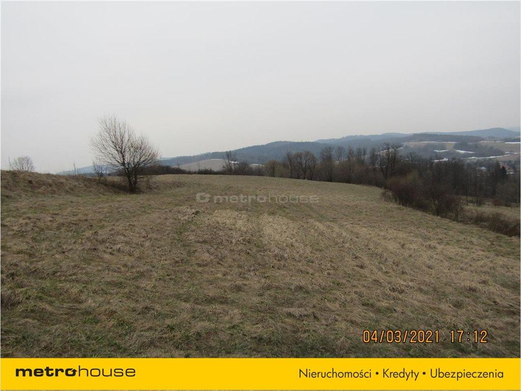 Działka rolna na sprzedaż Morochów, Zagórz  10000m2 Foto 11