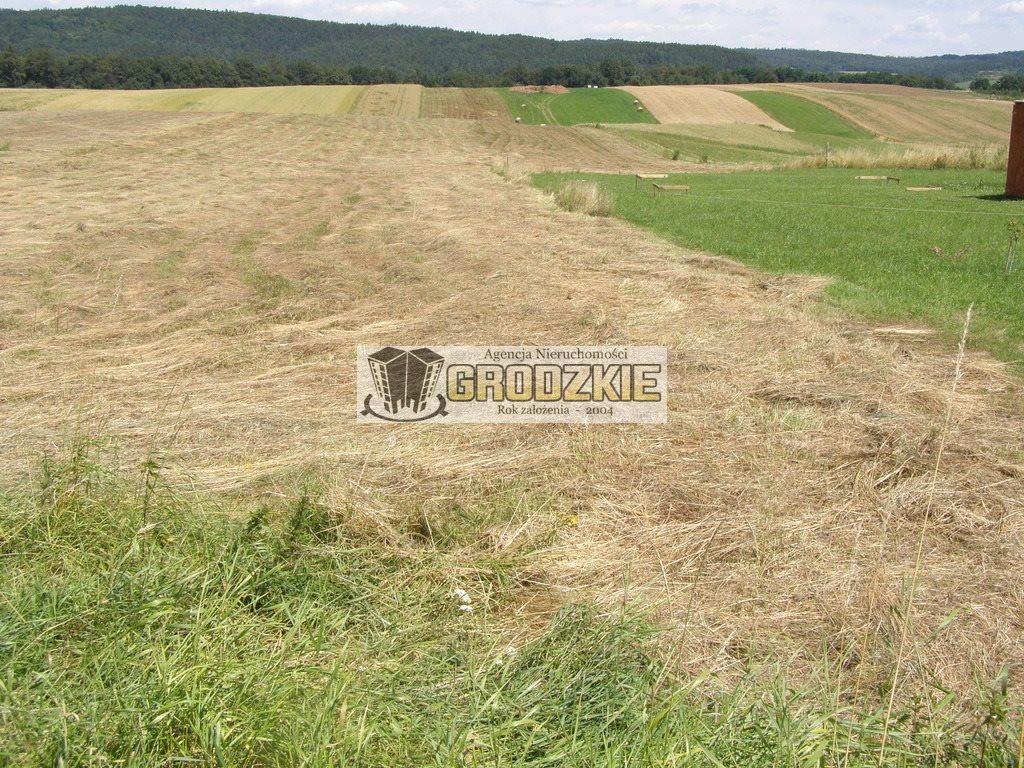 Działka budowlana na sprzedaż Tarnawce  5000m2 Foto 1