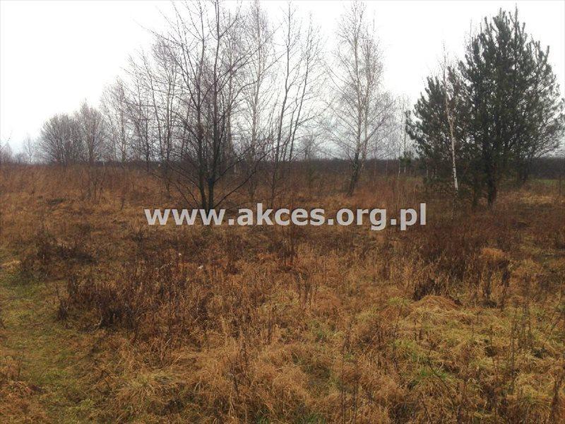 Działka rolna na sprzedaż Gołków  1261m2 Foto 9
