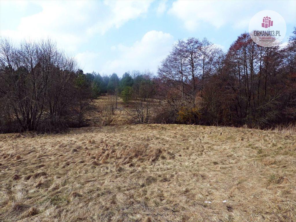 Działka rolna na sprzedaż Radostowo, Radostowo  108251m2 Foto 11