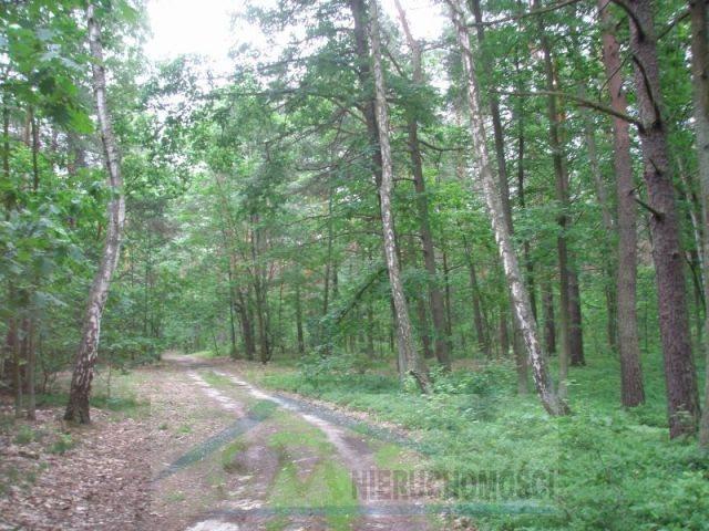 Działka leśna na sprzedaż Warszawa, Wawer  2100m2 Foto 2