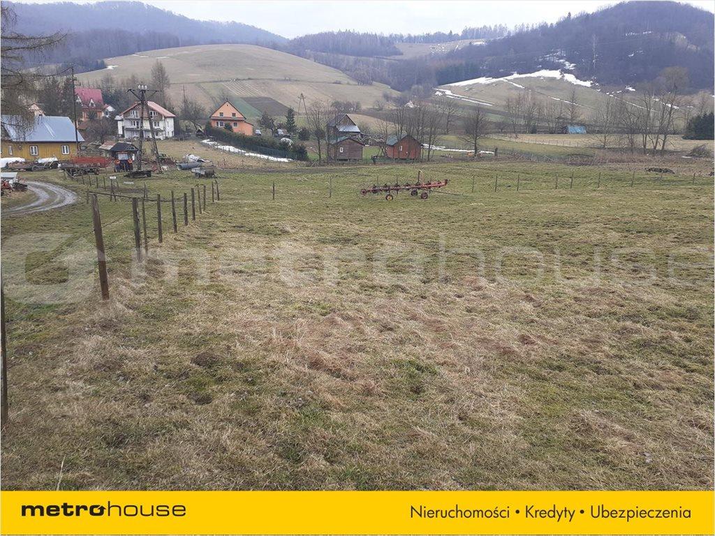Działka rolna na sprzedaż Terka, Solina  7800m2 Foto 3