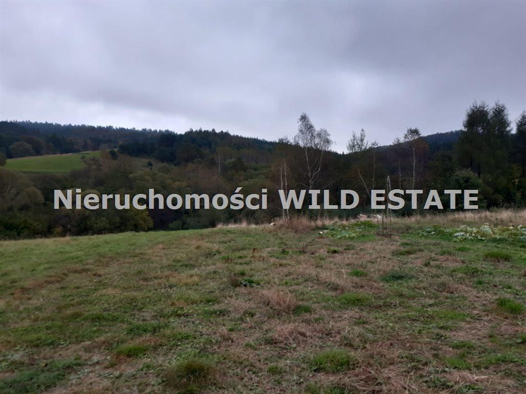 Działka rolna na sprzedaż Solina, Bereżnica Wyżna  42393m2 Foto 6