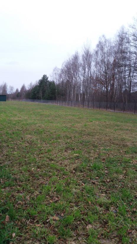 Działka budowlana na sprzedaż Radziwiłłów M  3000m2 Foto 2