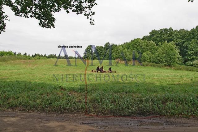 Działka rolna na sprzedaż Trygort  48700m2 Foto 5