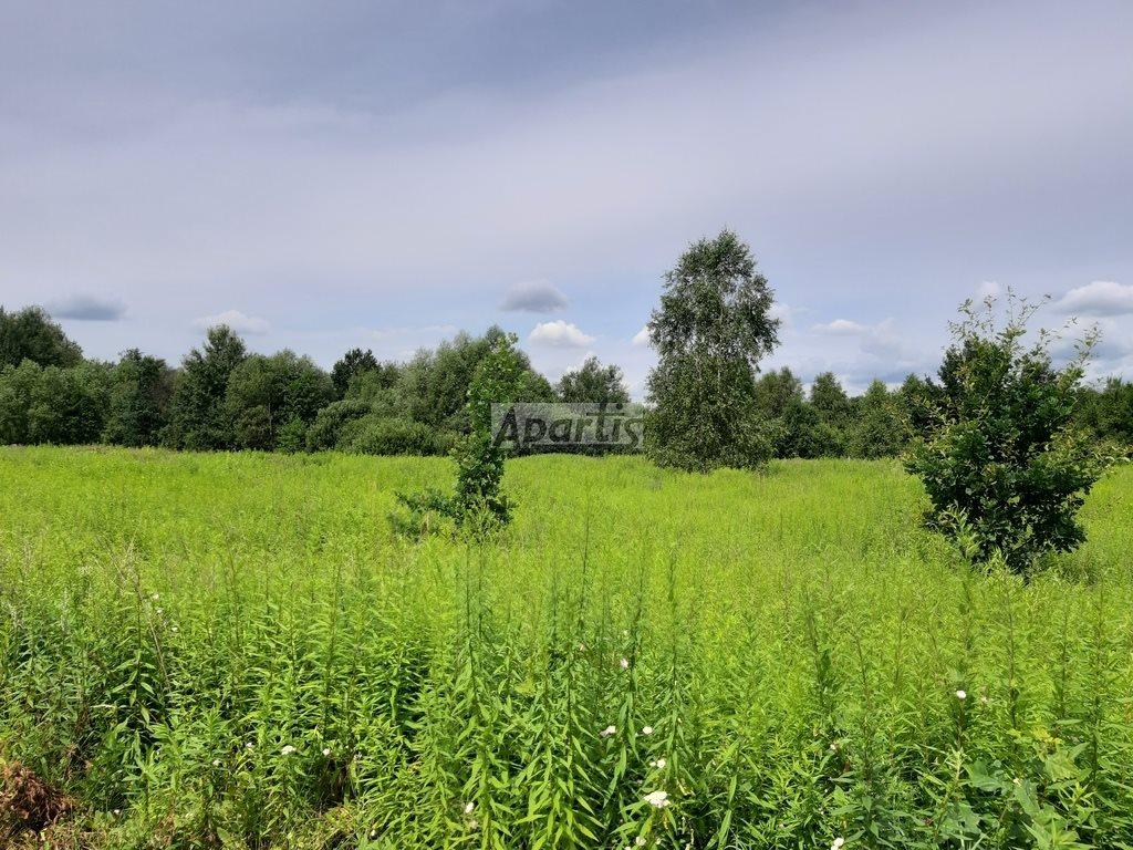 Działka rolna na sprzedaż Budziska  8229m2 Foto 2