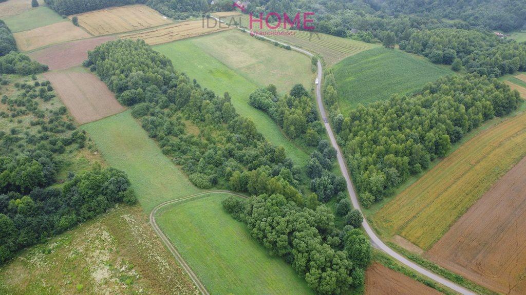 Działka leśna na sprzedaż Śliwnica  14500m2 Foto 5