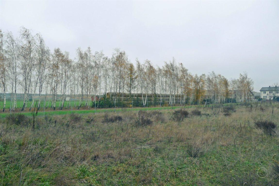 Działka inna na sprzedaż Bielawska Wieś  2100m2 Foto 6