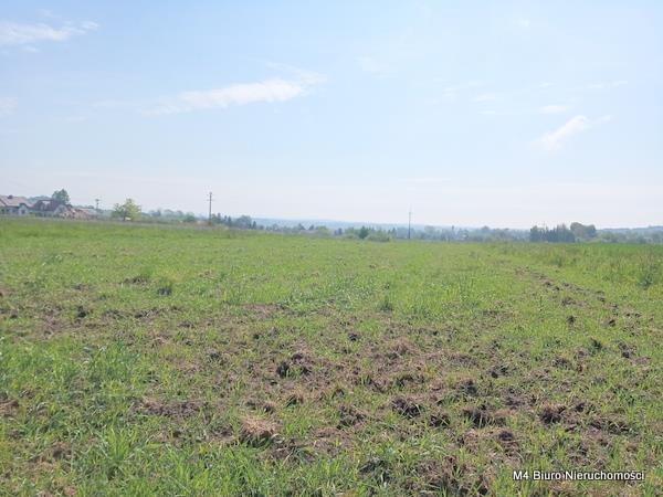 Działka rolna na sprzedaż Żeglce  15500m2 Foto 5