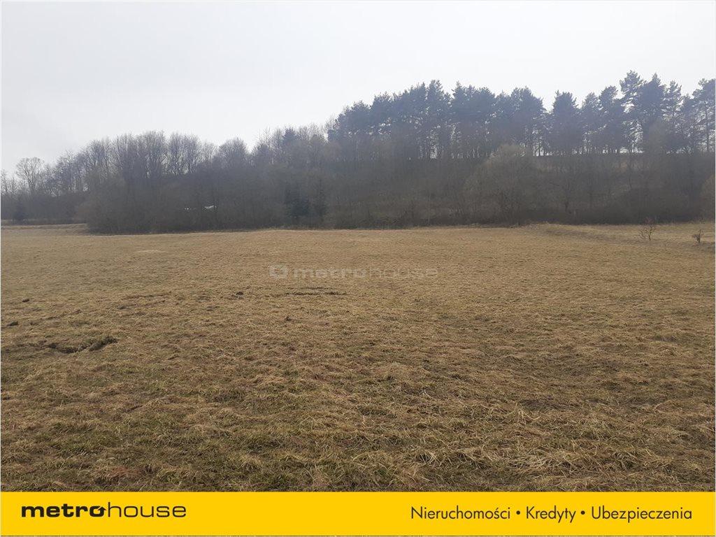 Działka rolna na sprzedaż Rzepedź, Komańcza  9300m2 Foto 4