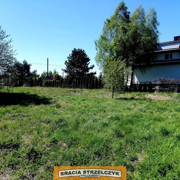 Działka budowlana na sprzedaż Buczynów  11987m2 Foto 6