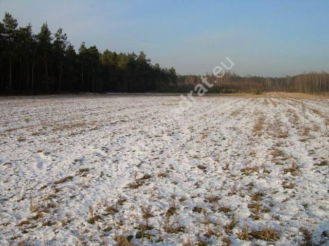 Działka rolna na sprzedaż Stanisławów  3000m2 Foto 5
