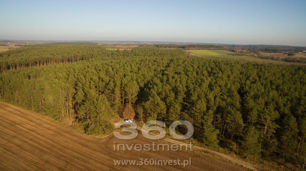 Działka leśna na sprzedaż Słonów  10800m2 Foto 9