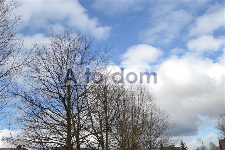Działka leśna na sprzedaż Choiny  18200m2 Foto 1