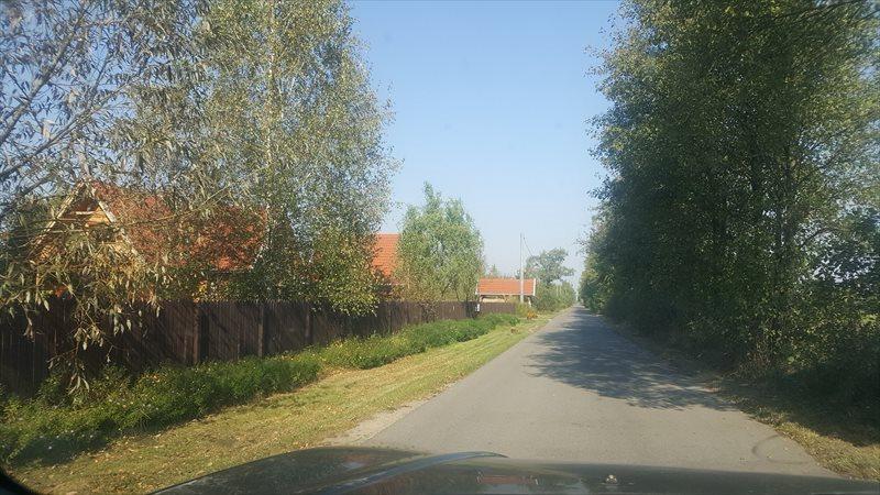 Działka budowlana na sprzedaż Sowia Wola  3200m2 Foto 6