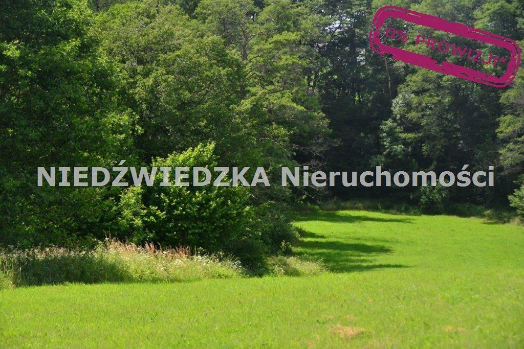 Działka budowlana na sprzedaż Mikołów, Mokre  12507m2 Foto 11