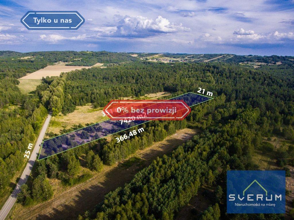 Działka leśna na sprzedaż Złoty Potok, Partyzantów  7420m2 Foto 1
