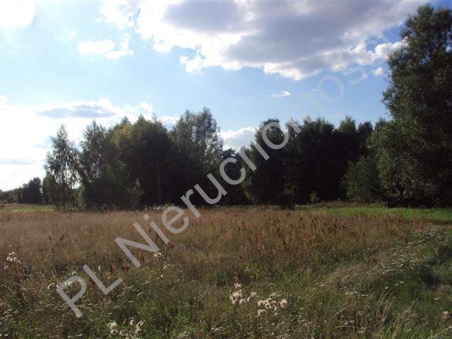 Działka rolna na sprzedaż Holendry Baranowskie  8300m2 Foto 1