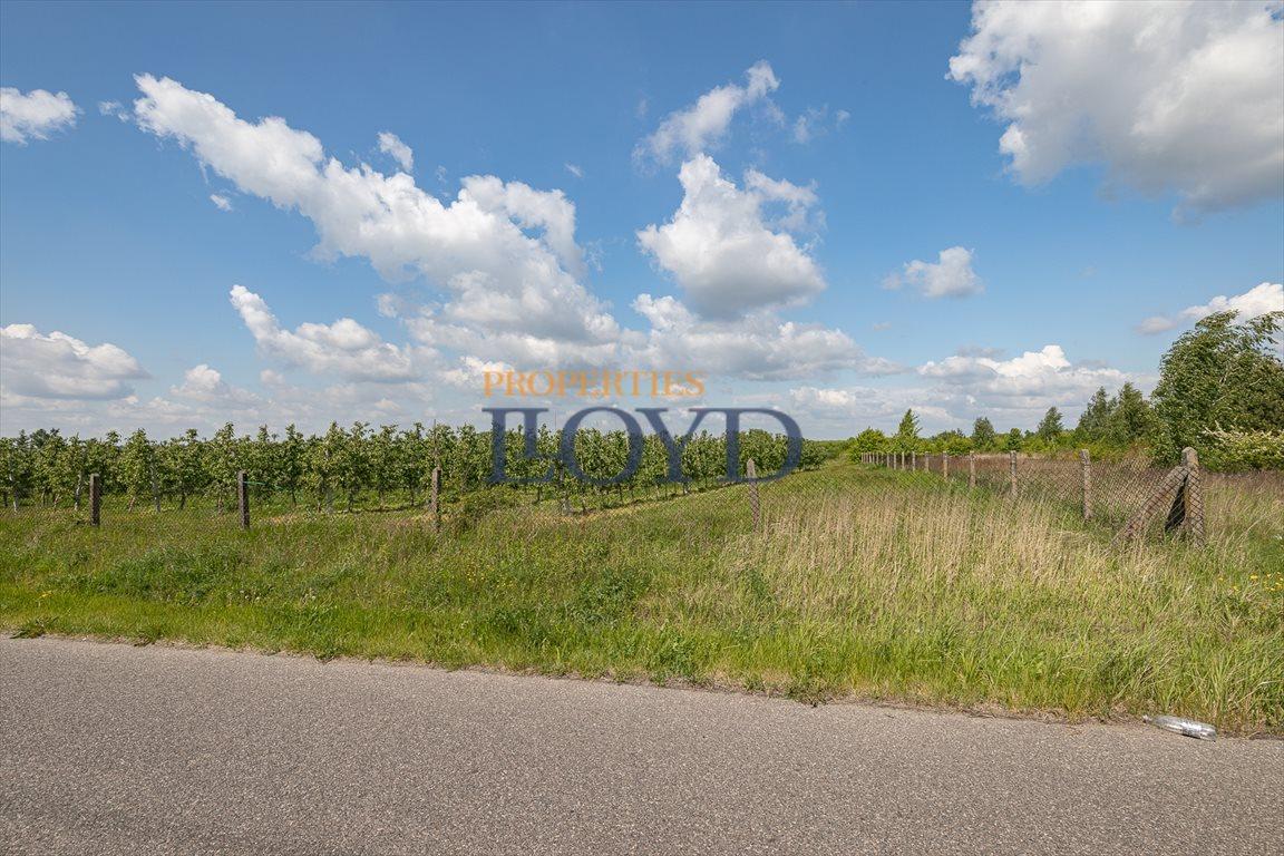 Działka rolna na sprzedaż Wola Wągrodzka, Ogrodowa  1000m2 Foto 8