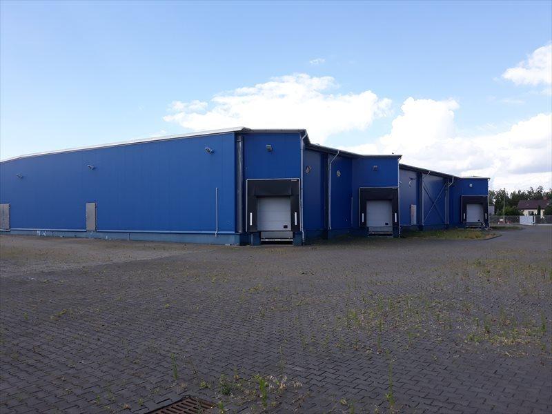 Lokal użytkowy na wynajem Hala - MAGAZYN - produkcja. 3648 m2 - WROCLAW  3648m2 Foto 7