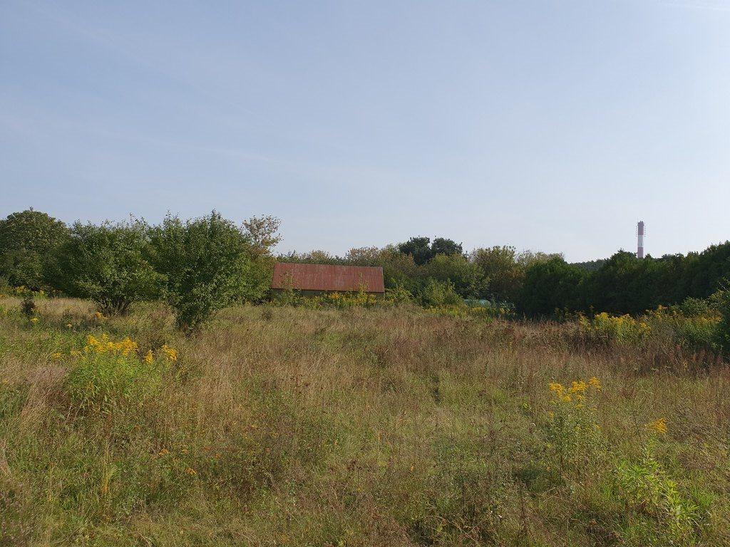 Działka budowlana na sprzedaż Mosina, Strzelecka  9274m2 Foto 4