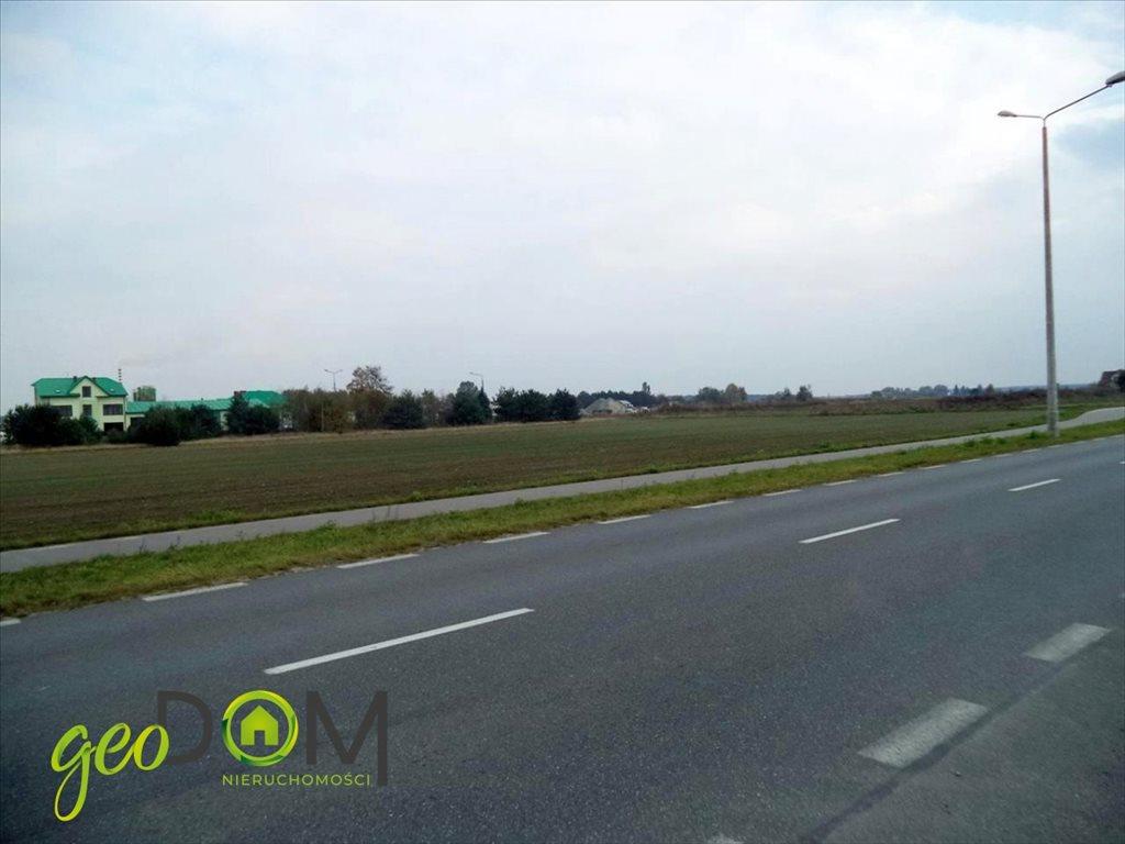 Działka przemysłowo-handlowa na sprzedaż Biała Podlaska  7008m2 Foto 5