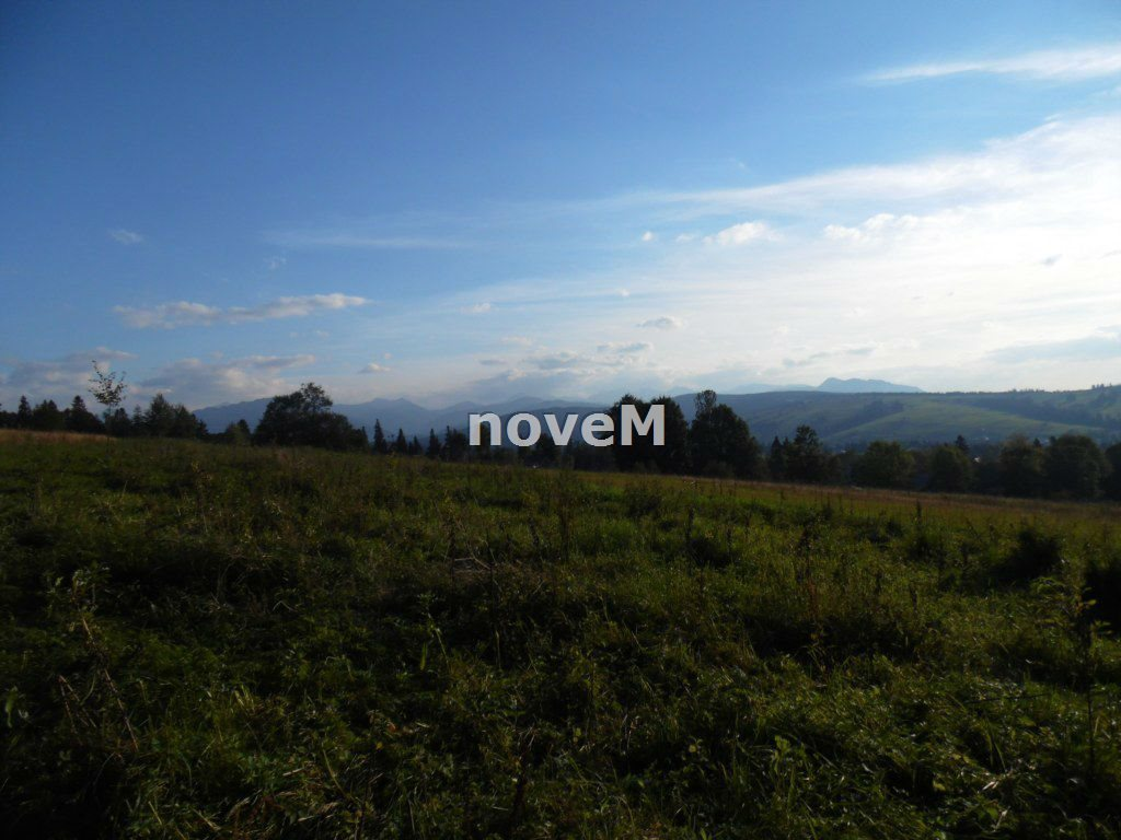 Działka rolna na sprzedaż Dzianisz  2508m2 Foto 6