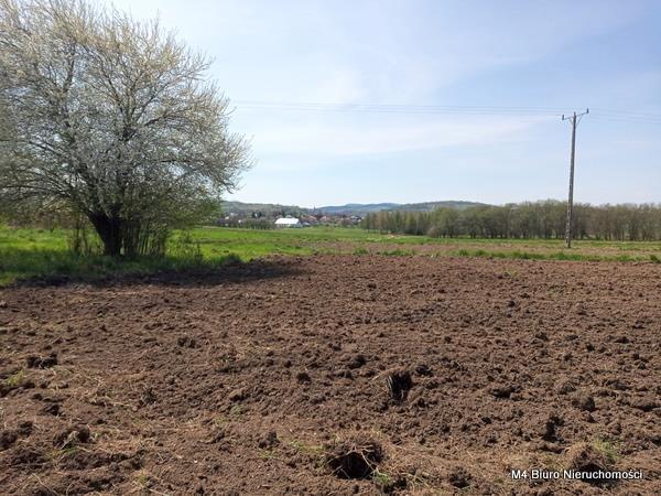 Działka rolna na sprzedaż Rogi  12000m2 Foto 4