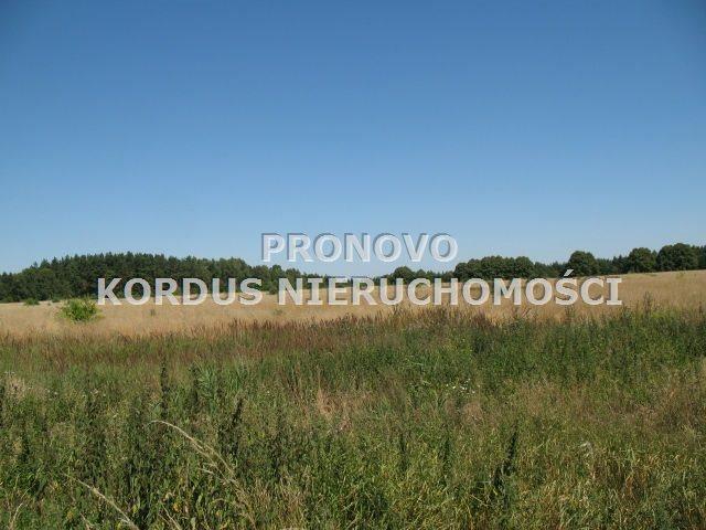 Działka rolna na sprzedaż Steklno  116500m2 Foto 3