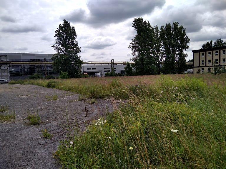 Działka inwestycyjna na sprzedaż Częstochowa, Dąbie  16388m2 Foto 4