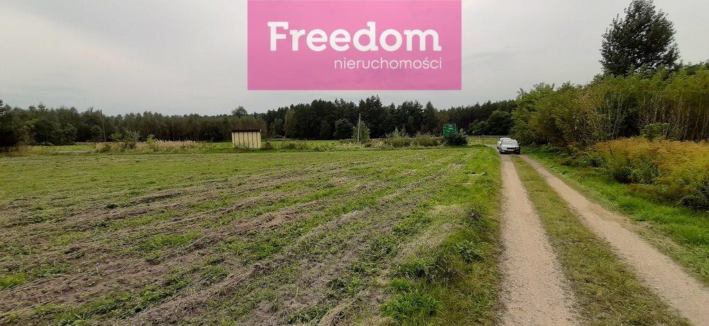 Działka inna na sprzedaż Cynków, Zabijak, Śląska  12362m2 Foto 10