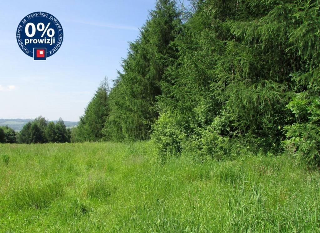 Działka leśna na sprzedaż Harta, Harta, Harta  14266m2 Foto 1