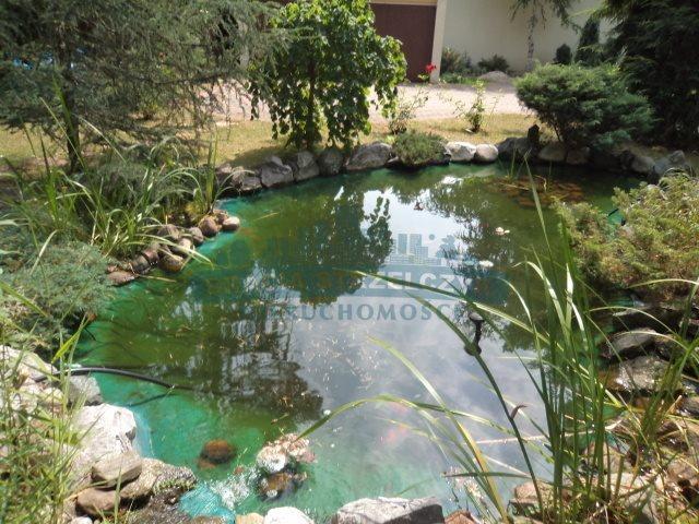 Lokal użytkowy na sprzedaż Józefów  560m2 Foto 11