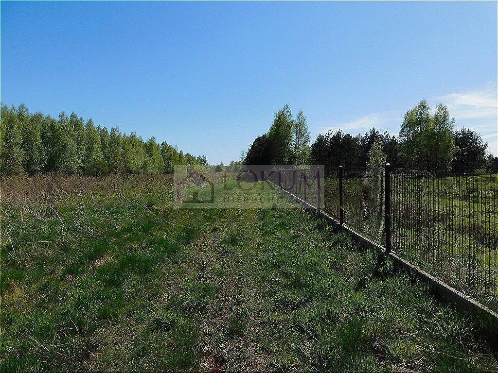 Działka rolna na sprzedaż Małęczyn  1500m2 Foto 2